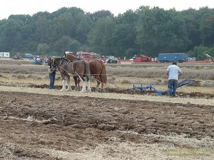 Busy ploughing